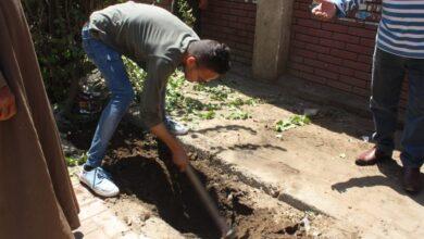 صورة بمشاركة 15 متطوع وعمال المدينة مبادرة ازرع شجرة تنفذ فى مركز نجع حمادى