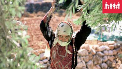 صورة القضاء على الفقر من أهداف التنمية المستدامة وفقا لبرنامج الامم المتحدة الانمائى للدول العربية