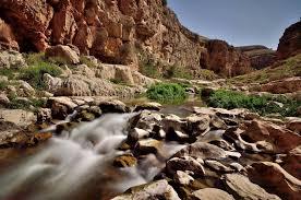 """صورة محمية """"وادى الجمال""""جنة على أرض مصر"""