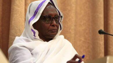 """صورة وزيرة خارجية السودان:اذا واجهت اثيوبيا موقفا قويًا من الخرطوم والقاهرة ستفكر مرتين قبل ملء السد """" بدون اتفاق"""""""
