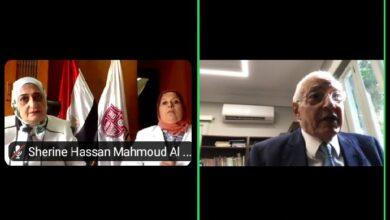صورة رؤية لأوضاع النظم السياسية العربية
